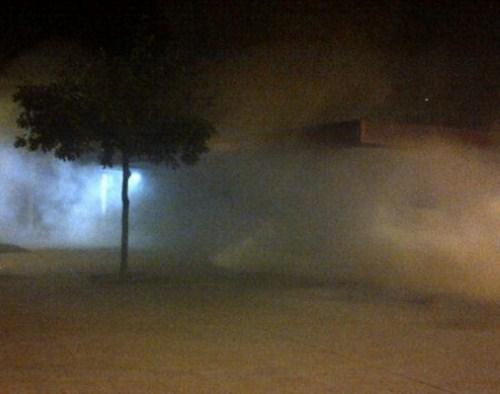 humo lena